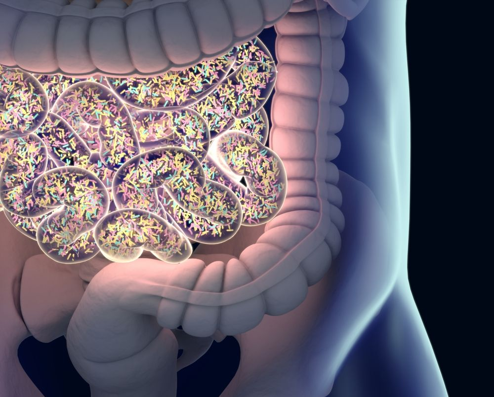 inflammation and IBD